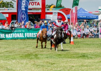 AshbyShow2015_Photography (11 of 67)