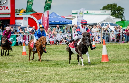 AshbyShow2015_Photography (12 of 67)