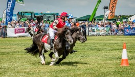 AshbyShow2015_Photography (5 of 67)