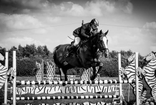 AshbyShow2015_Photography (63 of 67)