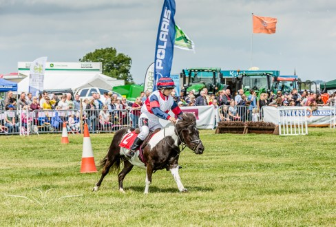 AshbyShow2015_Photography (7 of 67)