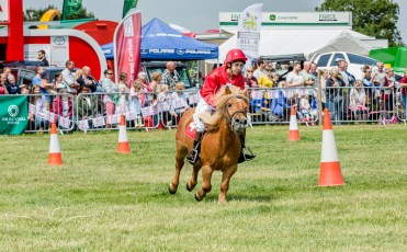AshbyShow2015_Photography (9 of 67)