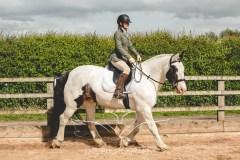 Equine_Photography_DerbyshireTMSPhotography-7