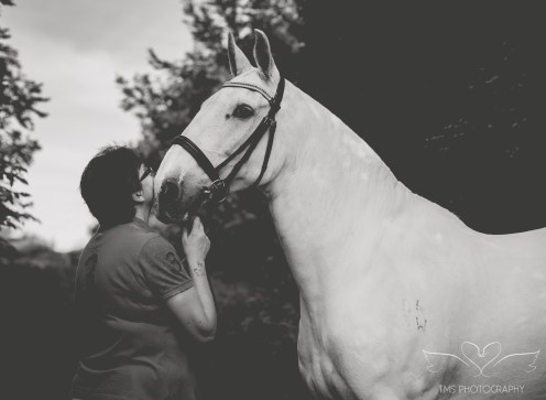 equine_photographer_Derbyshire-26