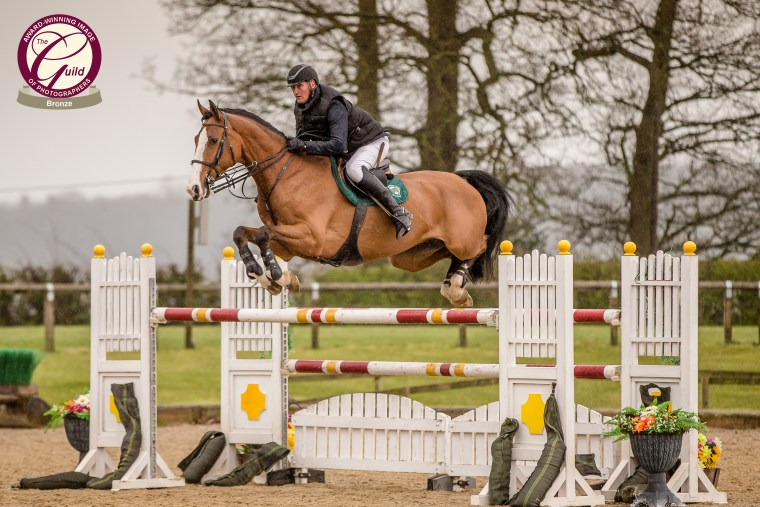 Guild_Awards_showjumping