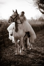 equine_Photographer_Leicestershire-12