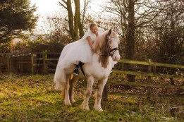 equine_Photographer_Leicestershire-21