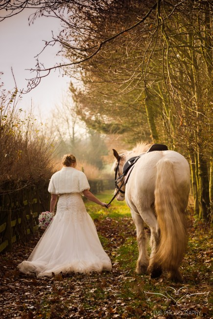 equine_Photographer_Leicestershire-44