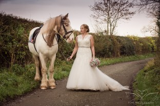 equine_Photographer_Leicestershire-64