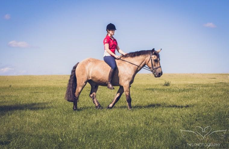 equine_photographer_Derbyshire-68