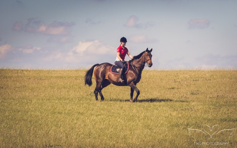 equine_photographer_Derbyshire-76