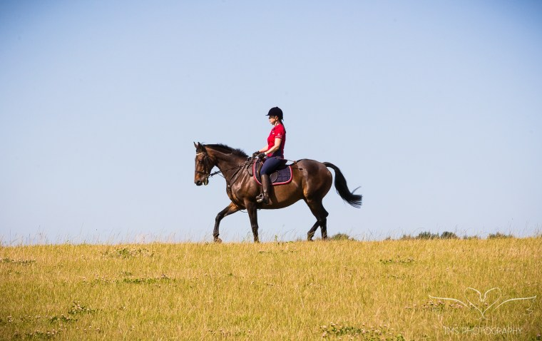 equine_photographer_Derbyshire-78