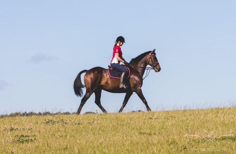 equine_photographer_Derbyshire-80