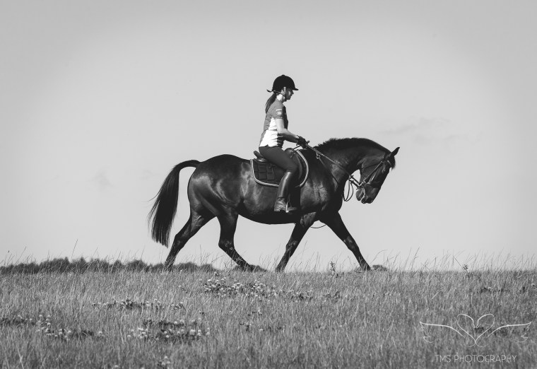 equine_photographer_Derbyshire-81