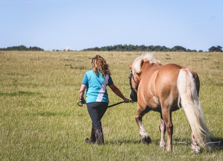 equine_photographer_derbyshire-24