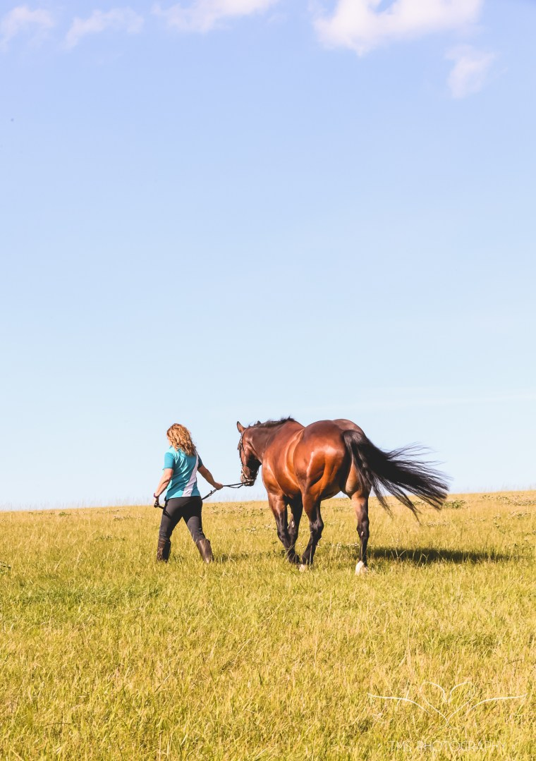 equine_photographer_derbyshire-48