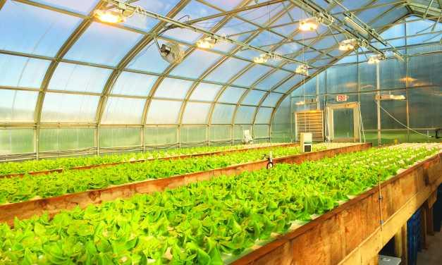 New aquaponics center opens in Madbury