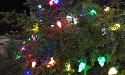 Town of Durham under pressure to suspend future tree lighting