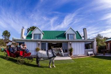 T'Niqua Horse & Carriage