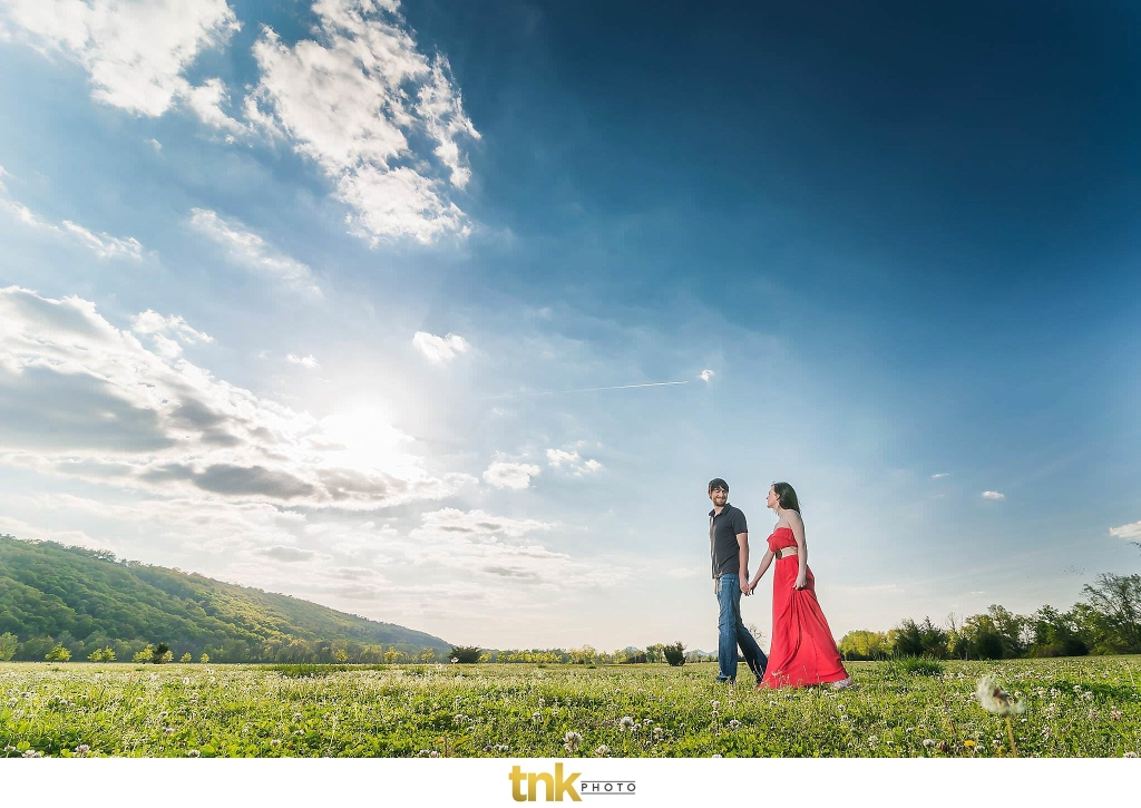 why you need an engagement photo session