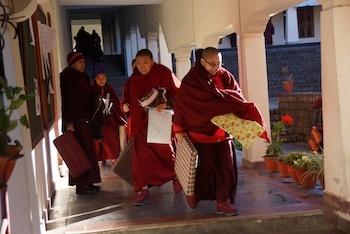 Tibetan Buddhist nuns at Dolma Ling Nunnery
