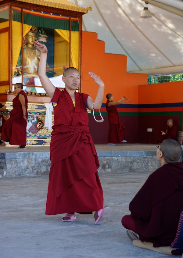 pair of Buddhist nuns debating