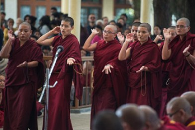 Buddhist debate, Buddhist nuns, Tibetan nuns, Tibetan Nuns Project, Jang Gonchoe, Buddhist women