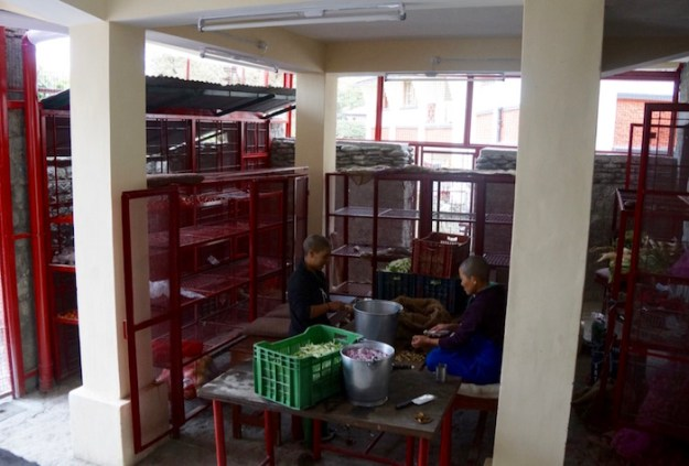 Dolma Ling Nunnery kitchen
