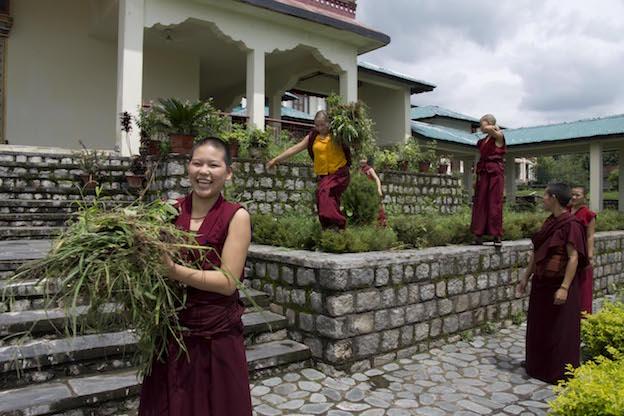 Tibetan Nuns Project, Shugsep Nunnery, nuns' garden