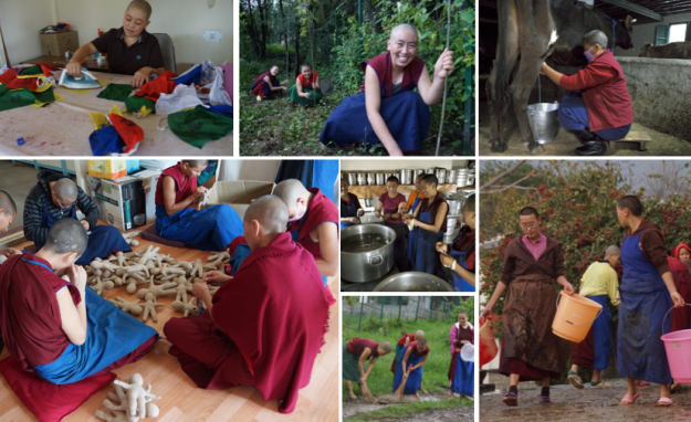Tibetan Buddhist nuns chores