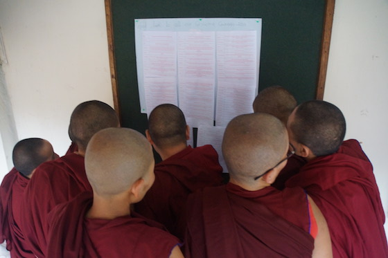 good luck messages for the Geshema candidates, good luck messages, Geshema, Geshema degree, Buddhist nuns, Tibetan nuns, Tibetan Nuns Project, Geshema exams