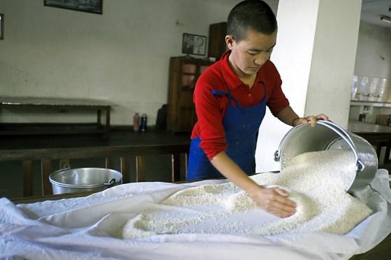 Tibetan Buddhist nun sorting rice