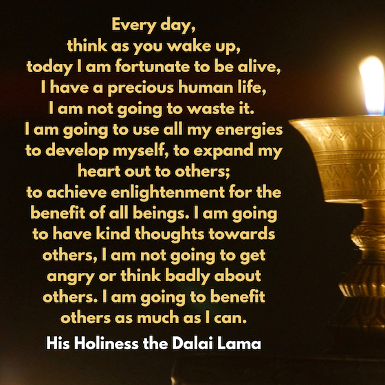 Dalai Lama inspirational quote Every day think as you wake up