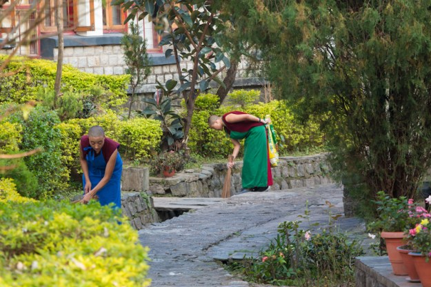 Dolma Ling Nunnery, nuns, prevent monsoon flooding