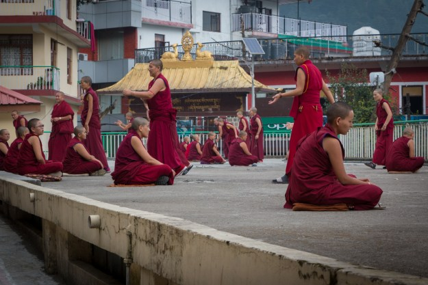 Geden Choeling Nunnery, Dharamsala, Tibetan Nuns Project, Tibetan Buddhism, Buddhist debate