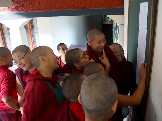 Geshema, Geshema exams, 2018 Geshema exam results, Dolma Ling Nunnery, Tibetan Nuns Project