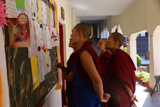 Geshema, Tibetan Buddhism, Geshe, Tibetan Nuns Project, Geshema candidates, Buddhism, nuns, nunnery, Buddhist nuns, Buddhist women, Geshema exams, messages of support Geshema candidates