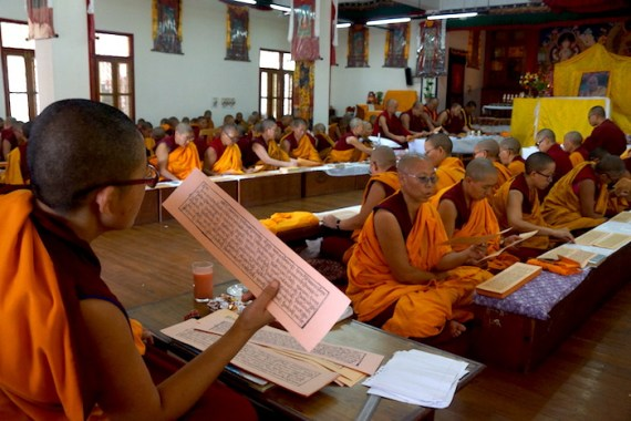 reading the Kangyur, Tibetan Buddhist holidays, Tibetan nuns, Tibetan Nuns Project, Dolma Ling, Saga Dawa