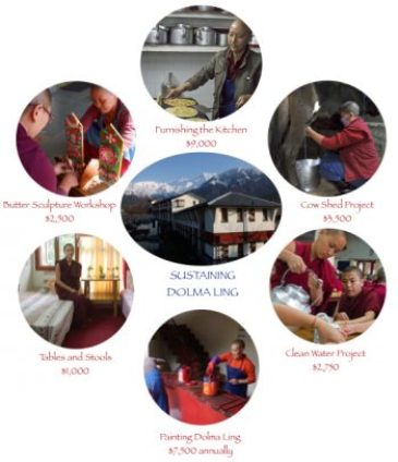projects at Dolma Ling Nunnery