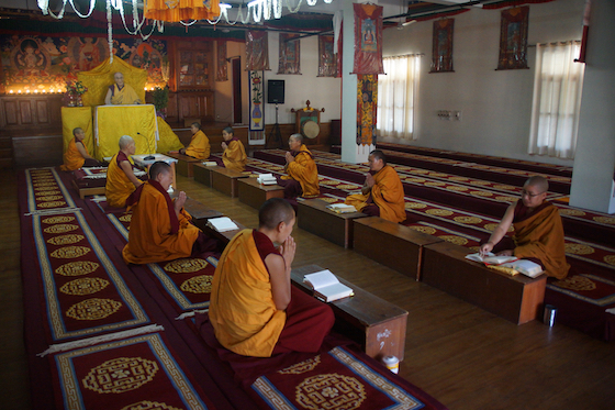 Tibetan Buddhist nuns at Dolma Ling social distance and pray, coronavirus lockdown