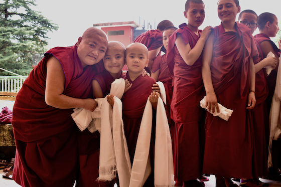 Tibetan Buddhist nuns at Geden Choeling Nunnery in Dharamsala