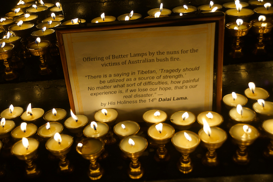 Offering of Tibetan butter lamps for victims of Australian bush fires