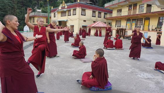 Tibetan Buddhist nuns practice debate at Geden Choeling Nunnery in Dharamsala.
