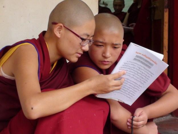 Tibetan Nuns Project, Tibetan Buddhism, nuns, Nuns' Media Team, Dolma Ling Nunnery, Tibetans