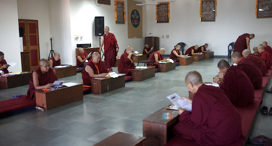 good luck messages to nuns, Geshema, Geshema exams, Tibetan Buddhist nun, Tibetan Buddhism, Tibetan Nuns Project