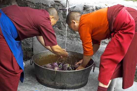 Tibetan Buddhist nuns, nunnery life, life during the monsoon