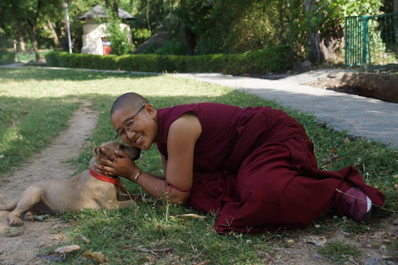 Buddhist nun with dog, Tibetan Nuns Project 2021 Calendar July photo for blog