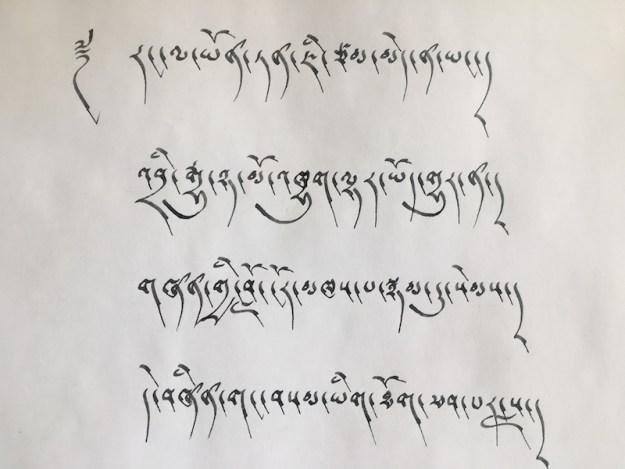 Tibetan calligraphy, Tibetan writing, calligraphy, Tibetan language, Tibetan culture, Tibetan Nuns Project, Shugsep Nunnery, drutsa script