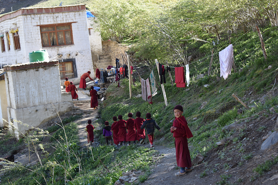 Young nuns at Dorjee Zong Nunnery