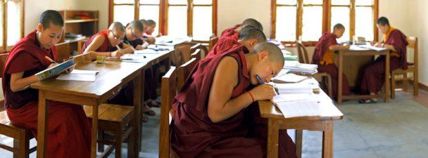 Tibetan Buddhist nuns studying, Tibetan Nuns Project
